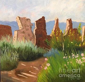 New Mexico Rock Wall by Marcia Hero