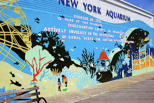 New York Aquarium, Coney Island, Brooklyn, New York by Zal Latzkovich