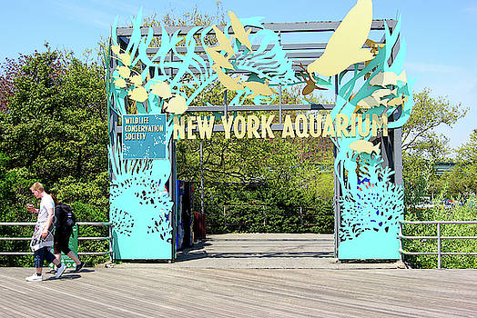 New York Aquarium Entrance, Coney Island, Brooklyn, New York by Zal Latzkovich