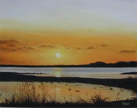 Newfoundland Sunset by Tammy Taylor
