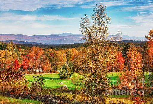 NH Autumn by Mim White