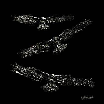 Night Glidepath by Diane Parnell