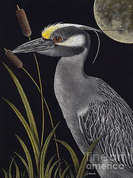 Night Watchman by Sheryl Unwin