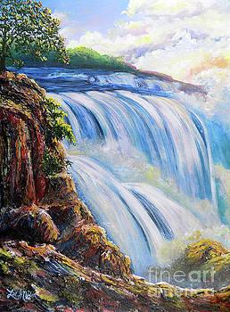 Nixon's A Grand View Of Niagara Falls by Lee Nixon
