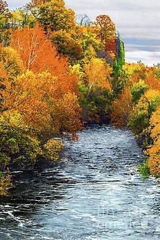 Regina Geoghan - NJ Passaic River Autumn Landscape