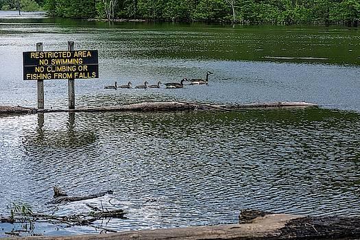 No Swimming by Kristi Swift