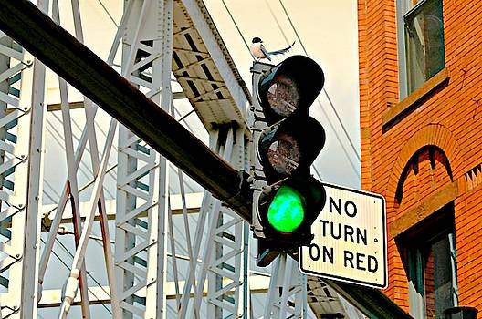 Diana Angstadt - No Turn on Red