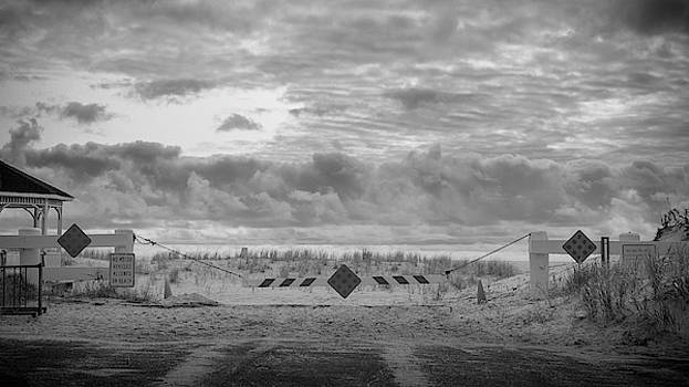No Vehicles by Steve Stanger