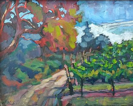 Noble Estates Vineyard by Margaret  Plumb