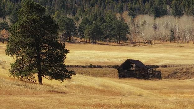 Noble Meadow Barn by Lukas Miller