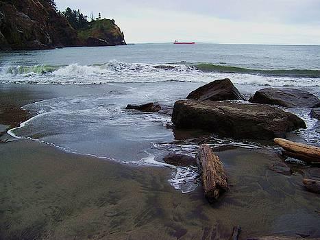 North Head Lighthouse Beach by Julie Rauscher