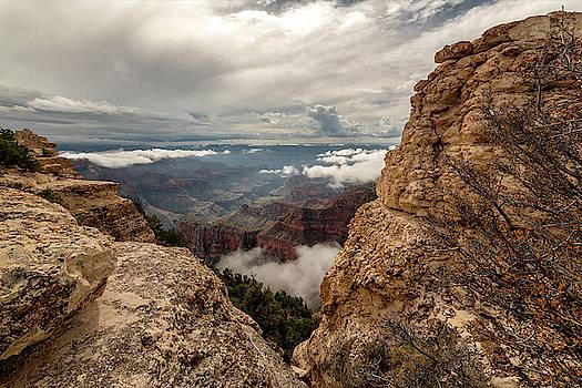Brian Harig - North Rim Fog 3 - Grand Canyon National Park - Arizona