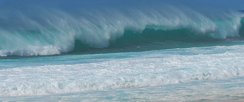 North Shore Surf's Up by Paul Croll