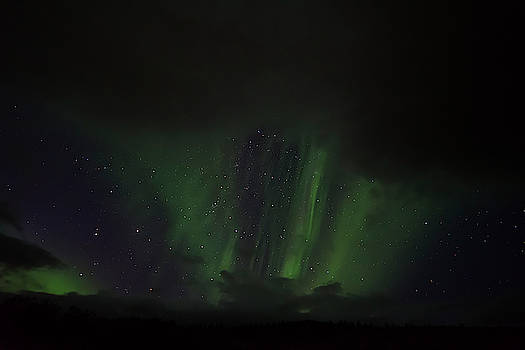 RicardMN Photography - Northern lights between clouds in Northwest Iceland #1
