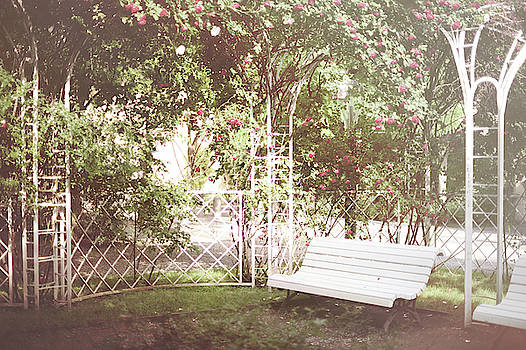 Jenny Rainbow - Nostalgic Roses of Franciscan Garden 12
