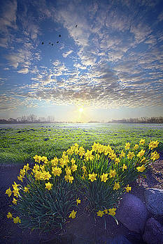 Nothing Is Worse Than Being Apart by Phil Koch