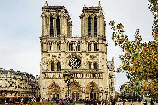 Notre Dame Cathedral Paris France by Wayne Moran
