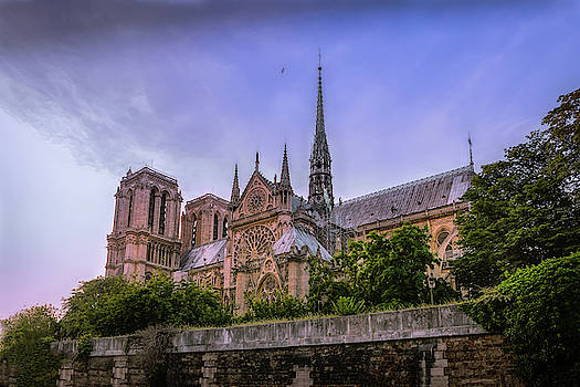 Notre Dame Cathedral Paris  by Mary Lynn Giacomini