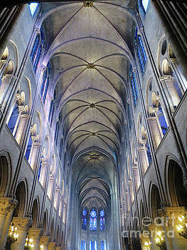 Notre Dame de Paris - A View from the Floor by Rick Locke