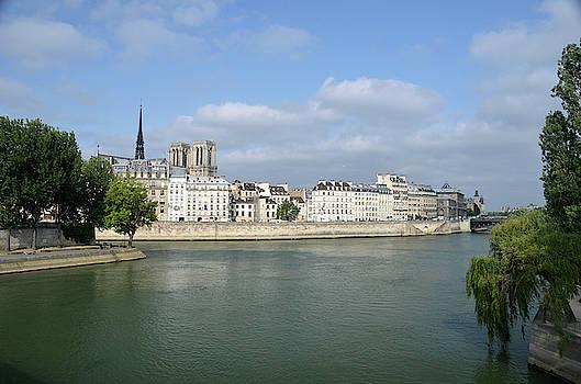 RicardMN Photography - Notre Dame de Paris on Ile de la Cite from the Northeast