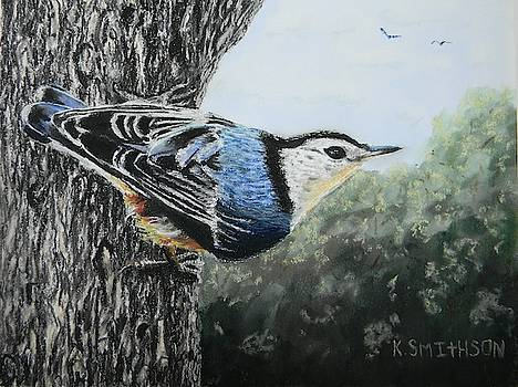 Nuthatch by Kathryn Smithson