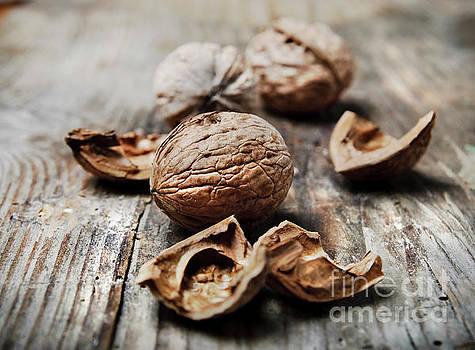 Nuts by Jelena Jovanovic
