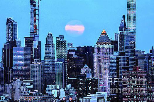 Regina Geoghan - NY Skyline Moonlit Blues