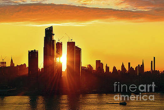 Regina Geoghan - NYC Halloween Orange and Gold  Sunrise Silhouette