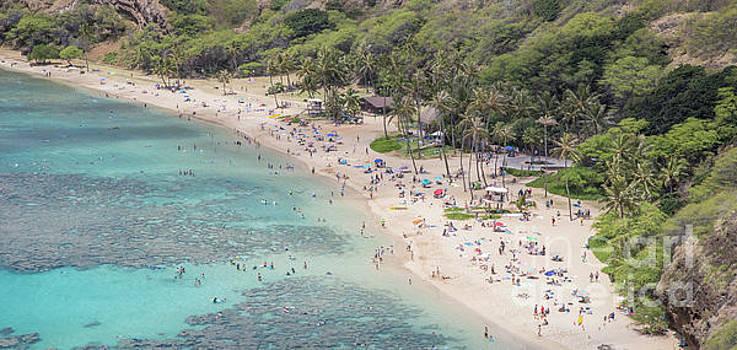 Oahu, Hawaii Beach by Eddie Hernandez