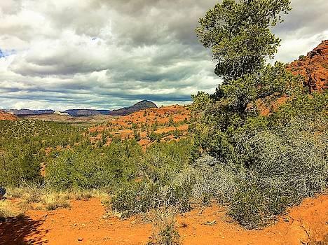 Oak Creek Baldwin Trail blue sky clouds red rocks scrub vegetation tree 0249 by David Frederick