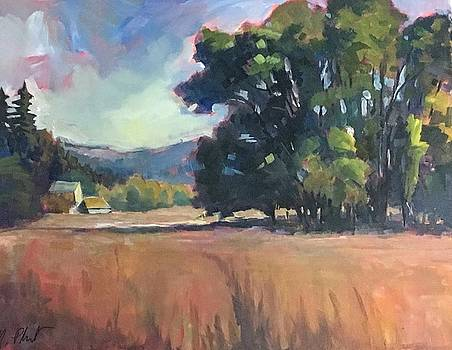 Oaks and Farms by Margaret  Plumb