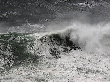 Ocean Spirit  by Stephen Gehring
