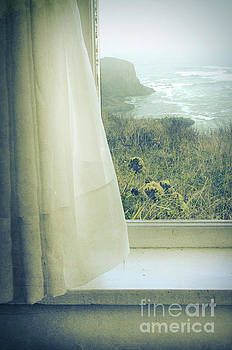Ocean View Out Widow by Jill Battaglia