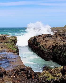 Ocean Wave by Sarah Lilja