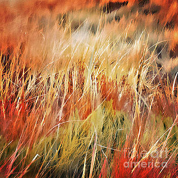 October Grasses by Margaret Koc