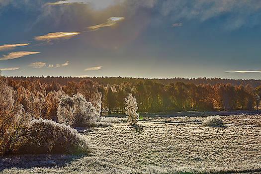 October morning #i0 by Leif Sohlman
