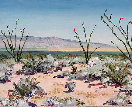Ocotillos in April by Robert Gerdes