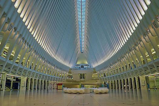 Oculus / New York by David Posey