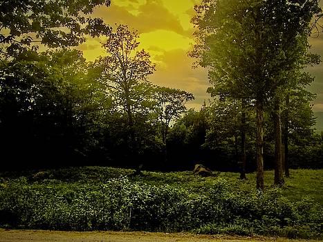 Off the Beaten Path by Elizabeth Tillar