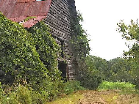 Cathy Lindsey - Old Abandoned Barn 3