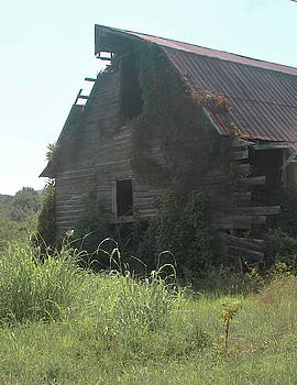 Cathy Lindsey - Old Abandoned Barn
