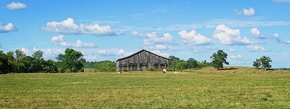 Old Barn 1 by John Benedict