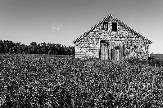 Old Barn Andover New Hampshire Black and White by Edward Fielding