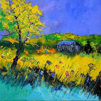 Old barn in summer by Pol Ledent