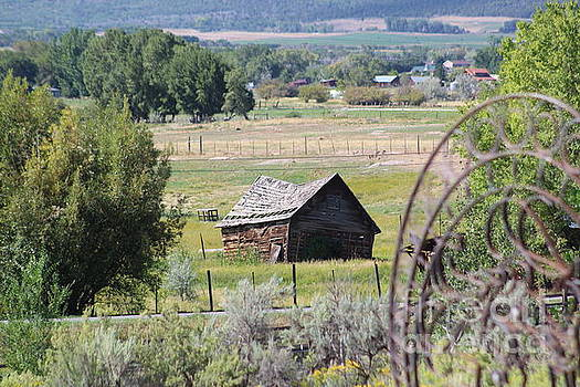 Old Barn in the Valley by Tammie J Jordan