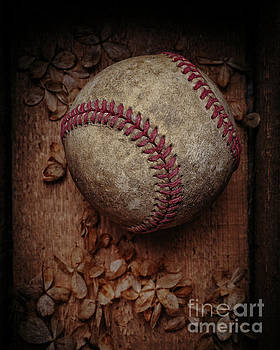 Edward Fielding - Old Baseball Still Life Box