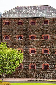 Bob Phillips -  Old Bushmills Distillery