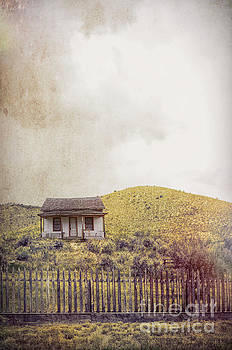 Old Cabin on a Hill by Jill Battaglia