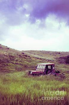 Jill Battaglia - Old Car in a Field