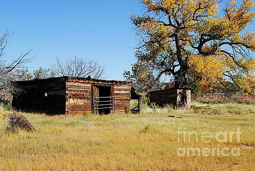 Old Country by Wendy Girard